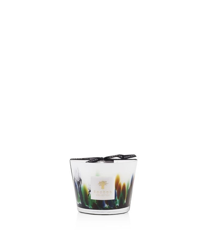 Baobab Collection Rainforest Amazonia Candle Max 10 Multicoloured