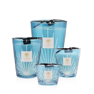 Baobab Collection West Palm Candle Max 16