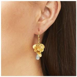 Ashiana Winona Earrings in Labradorite