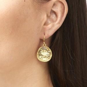 Ashiana Solange Earrings in Labradorite